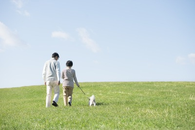 散歩する犬と老夫婦の後ろ姿