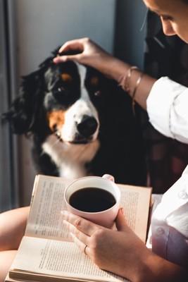 コーヒーカップを片手に読書をしながら犬を撫でる女性