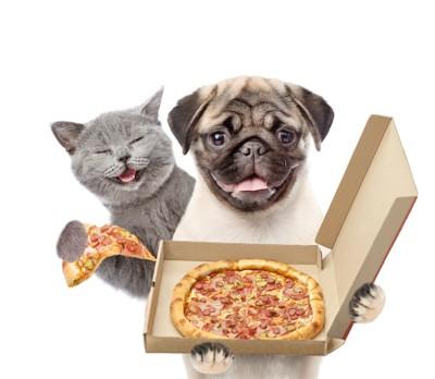 ピザを持ったパグと猫