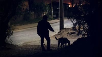暗い道を散歩する犬と人