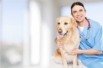 獣医師さんと犬