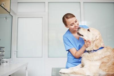 女性獣医さんと犬