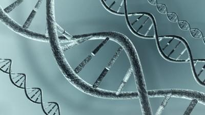 遺伝子イメージ