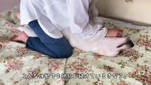こんな~字幕