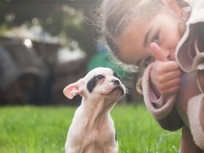 女の子とフレンチ・ブルドッグの子犬