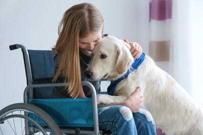犬を抱きしめる車いすに乗った少女