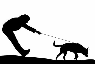 散歩中に犬に引っ張られる人のシルエット