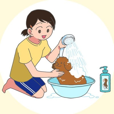 犬のシャンプーは人間用のものを使う飼い主は意外と多い
