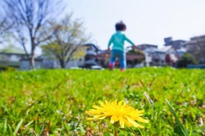 公園と走る子供