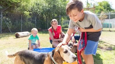 ビーグル犬を撫でる少年と家族
