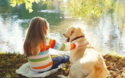 後ろ姿の少女と犬