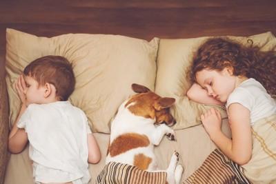 真ん中で眠る犬と端で眠る子供二人