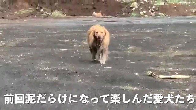 前回~字幕