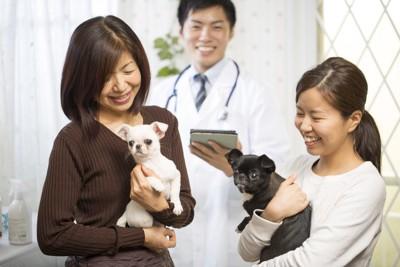 病院で愛犬を抱えた笑顔の飼い主さんと獣医師