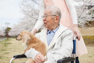 車椅子で散歩するおじいちゃんと犬