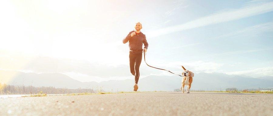 思い切り走りながら散歩する男性と犬