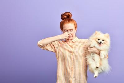犬をくさがる女性