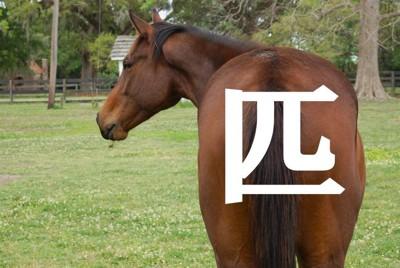 馬の尻と漢字