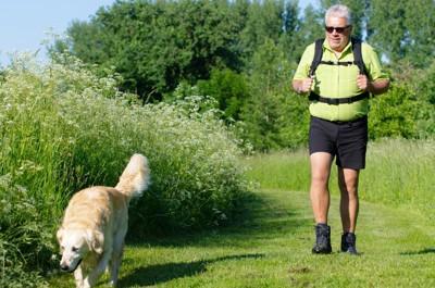 老人と犬の散歩