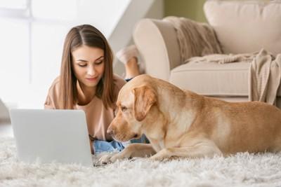 一緒にパソコンを見ている人と犬