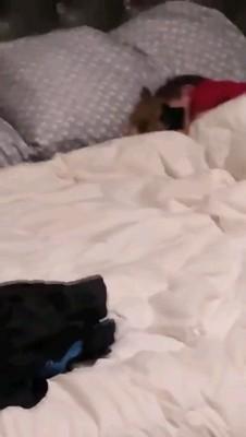 子犬抱き締める赤ちゃん