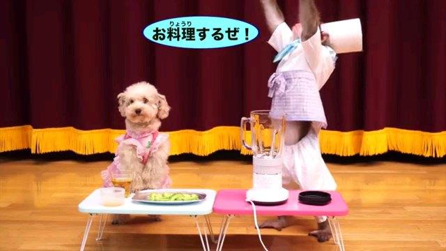 お料理するぜ!~字幕