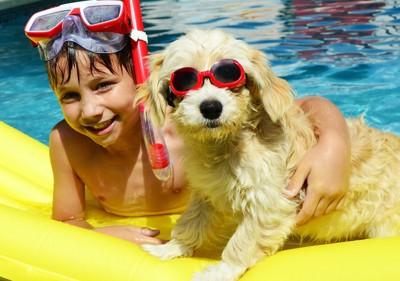 プールで遊ぶ男の子と犬
