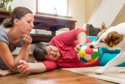 飼い主からボールを奪い取ろうとしている犬