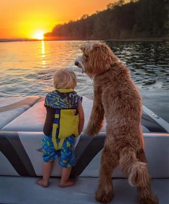 夕日を眺める犬と子供