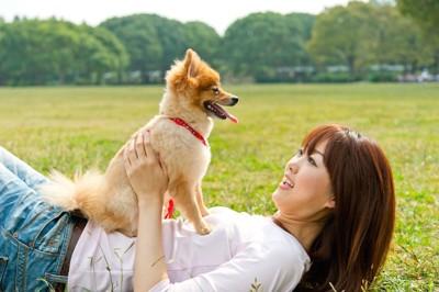 芝生に寝転ぶ女性の上に乗る犬