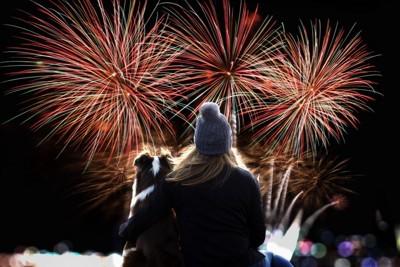 花火を見る犬と女性