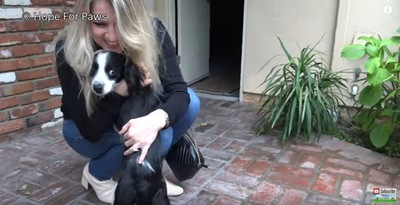女性に抱き寄せられる犬