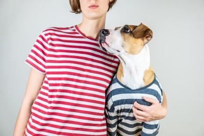 ボーダーのシャツを着た犬と飼い主