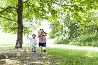 虫取り網を持って走り寄ってくる二人の子供