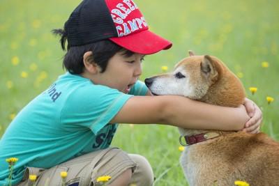 黄色い花の中で柴犬を抱き寄せる男の子