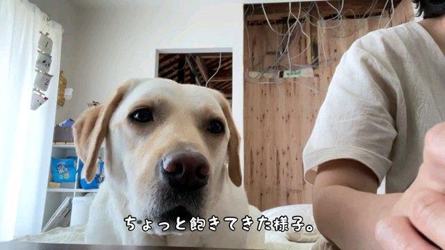 ちょっと~字幕