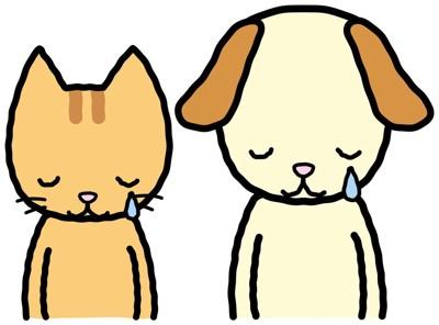 犬猫泣くイラスト
