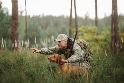 狩りをする犬と人