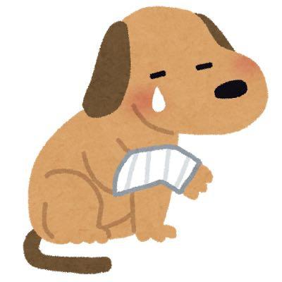怪我をした犬のイラスト