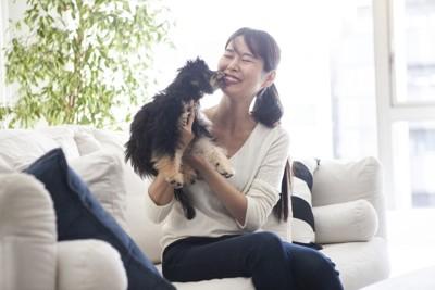 飼い主の顔を舐める犬