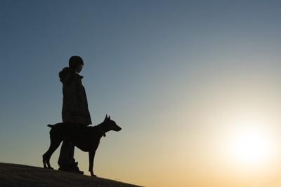ドーベルマンと飼い主のシルエット