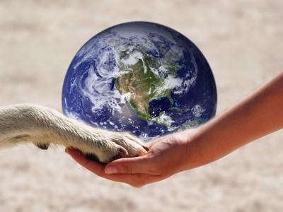 地球をバックに犬と人の手