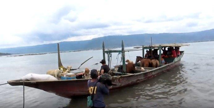 動物たちを乗せたボート