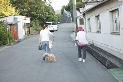 女性と年配女性の2人 プードルリード着用