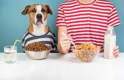 シリアルを食べる人の隣に座った犬とドッグフード