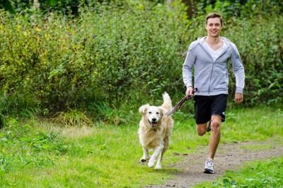 ゴールデンレトリーバーと走る男性