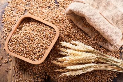 麦の穂と穀物