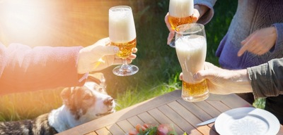 ビールで乾杯する人たちを見上げる犬