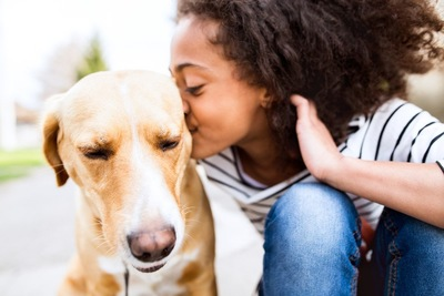 キスされる犬