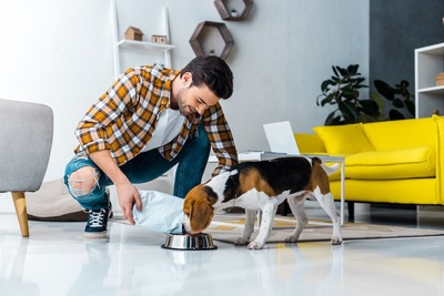 ドッグフードを食べる犬を見つめる男性